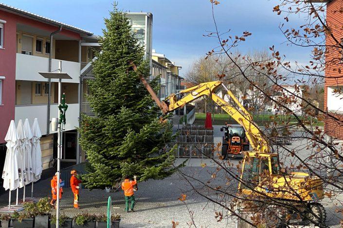hallbergmoos-mooskurier-weihnachtstanne-2020